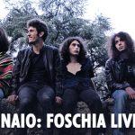 IMMAGINI_FACEBOOK___EVENTI_Foschia-RadioCap